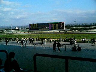 京都競馬場であります
